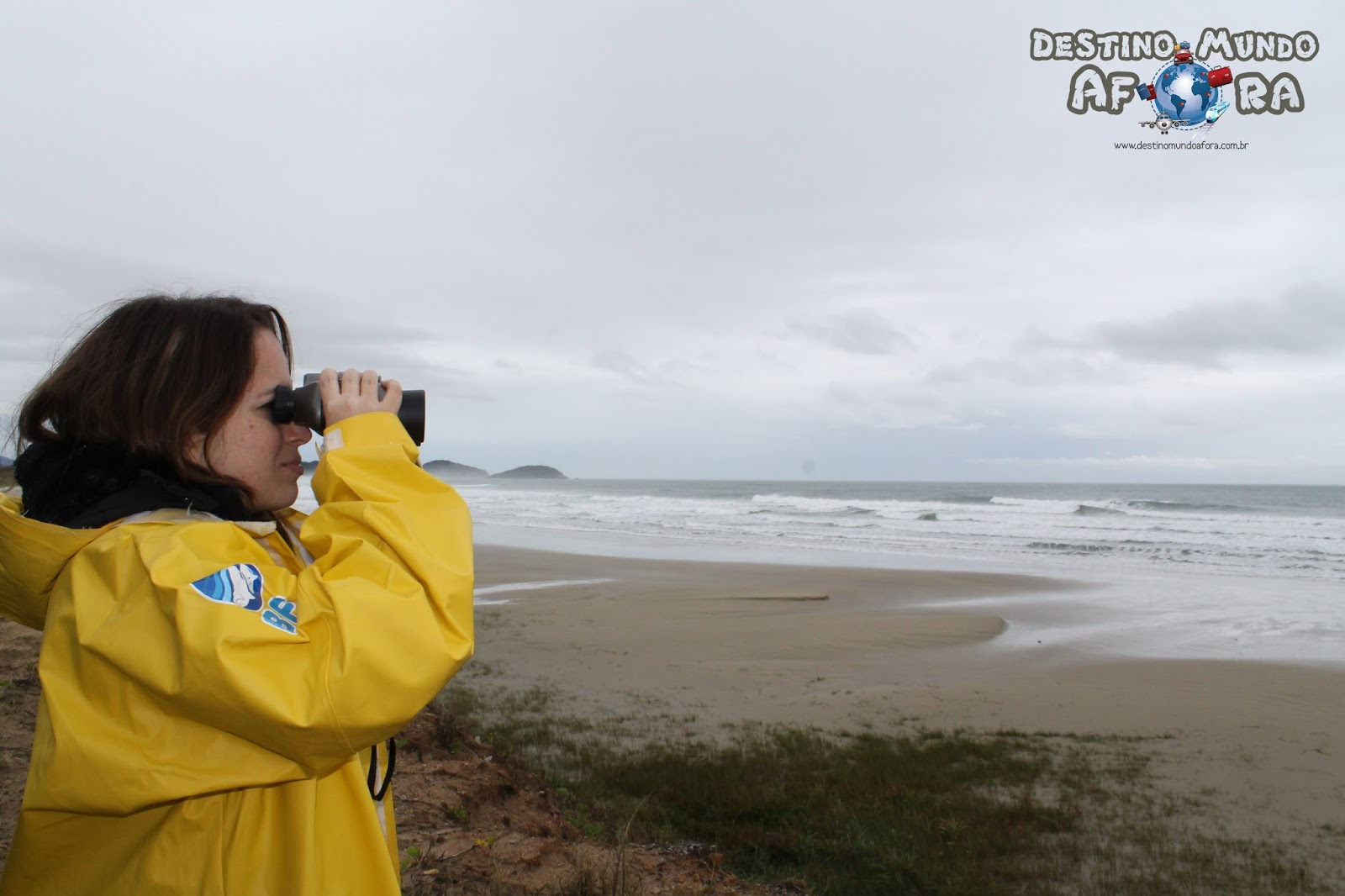 Observação de baleias francas por terra