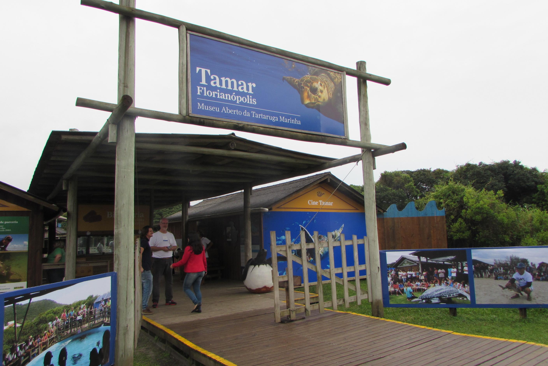 Projeto Tamar e Museu Aberto da Tartaruga Marinha, em Florianópolis