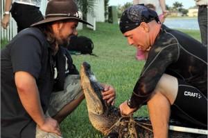 Programa Gator Boys, do Animal Planet. Foto: Divulgação